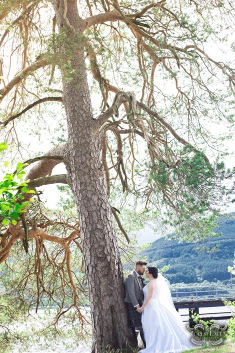 Wedding Photography Glasgow Tree
